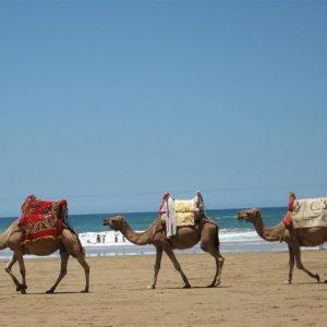 playa-de-las-cuevas-asilah-marruecos-13