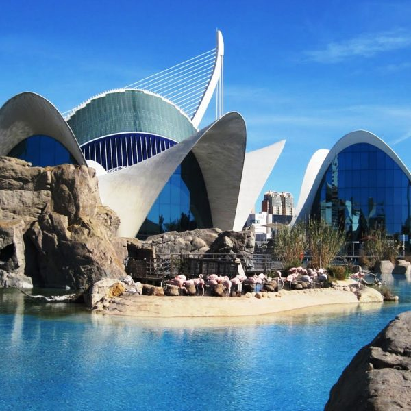 Valencia mediterr neo intenso 3 dias 150 viajes explorer for Promociones oceanografic