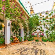 patio-cordoba-spain-flowers-travel-me