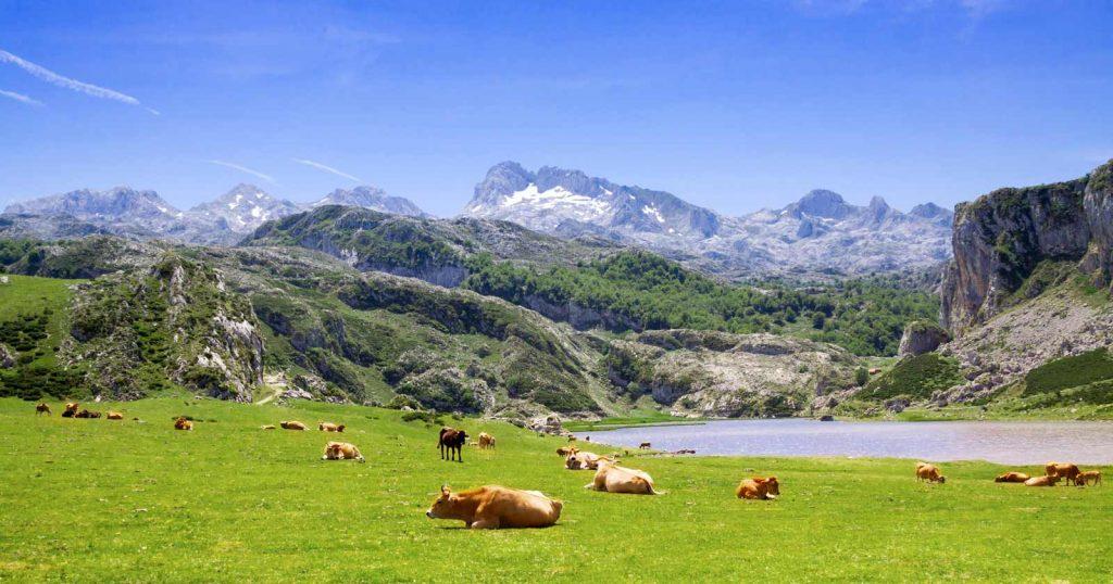 img_dest_espana_asturias_covadonga_1600x840_19