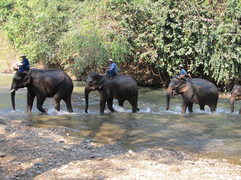 thailand-287281_960_720