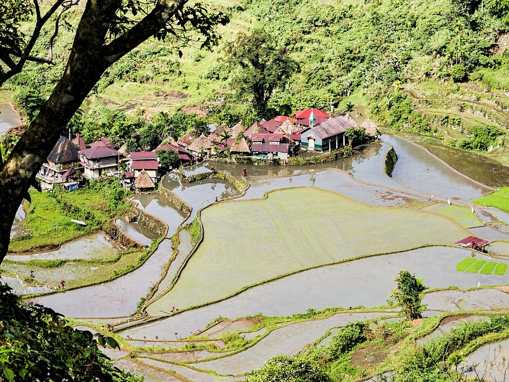 1024px-Bangaan_Rice_terraces