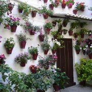 1024px-Fiesta_de_los_Patios_de_Córdoba