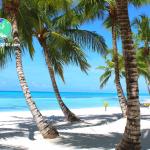 Isla Saona Punta Cana con Todo Incluido
