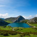 Enol lake in mountains with cows and sheeps on green pasture in national park Picos de Europa, Spain